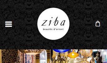 Aperçu sur cellulaire de Ziba